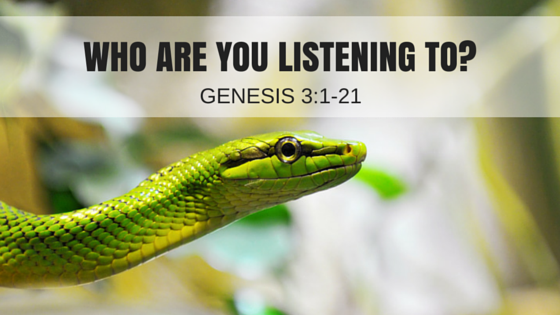 who-are-you-listening-to